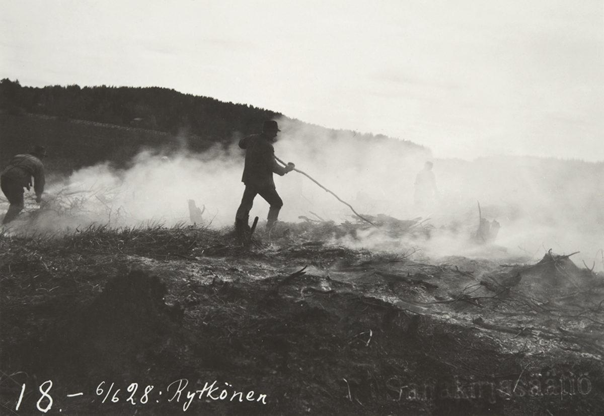 Svedjebruk i Tuovilanlahti i Maaninka 1928. Foto: Ahti Rytkönen / Museiverkets Bildsamlingar