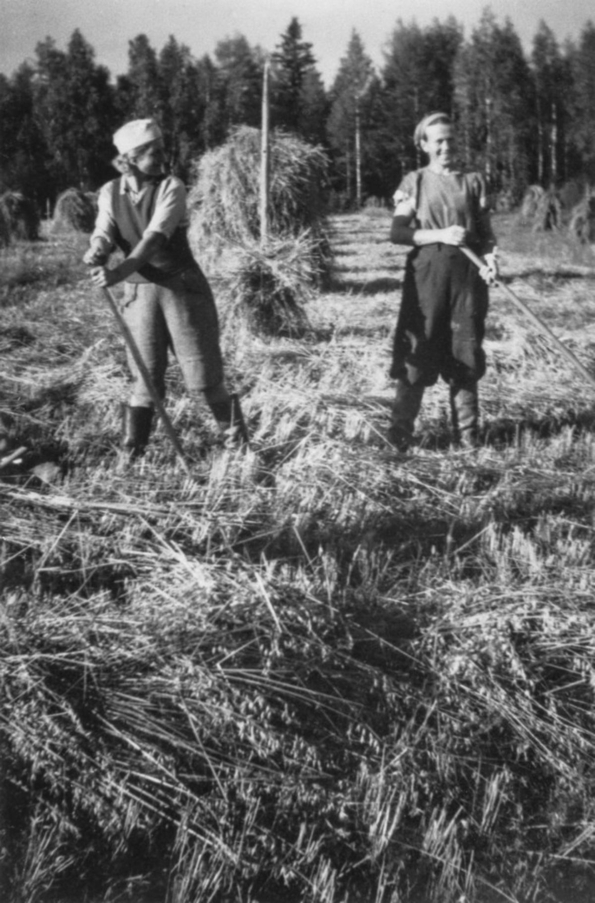 Workers stationed at Aurala Manor in Hollola in the Manor's oat field 1944 (mirror image of the original). Photo: Kirsti Järvinen / Picture Collections of Finnish Heritage Agency